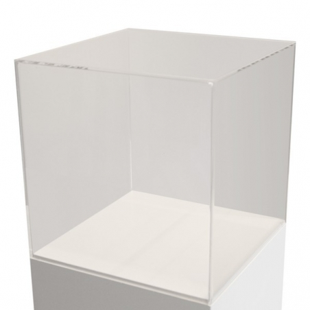Acrylic Display Case, 50 x 50 x 50 cm (LxWxH)