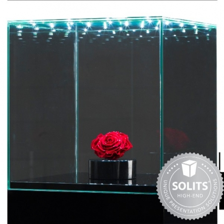 Glass Display Case with Integrated LEDs and a Door, 30 x 30 x 30 cm (l x w x h)