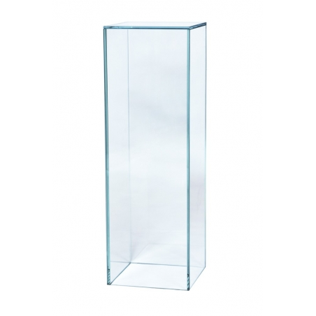 glass plinth, 25 x 25 x 100 cm (LxWxH)